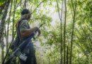 Ofensivas y enfrentamientos en el Magpet militarizado ridiculizan las declaraciones de las AFP sobre un NPA debilitado